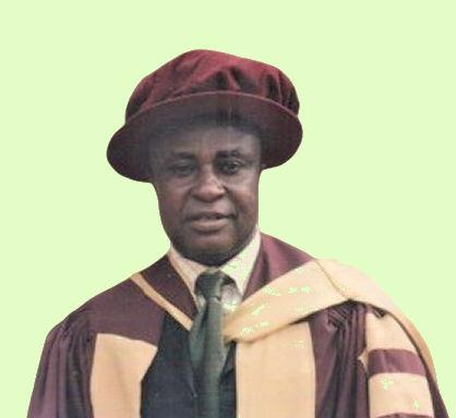 Prof Ukpabi