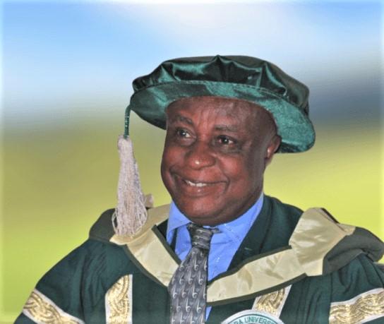 Prof Ukpabi - ED